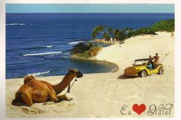 Praia / Parque Turístico Ecologico Dunas De Genipabu (Natal), Postcard Brasil Addressed To ANDORRA - Natal