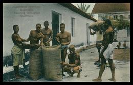 QUELIMANE - Escolhendo O Amendoim   ( Ed. Spanos & Tsisias Nº 1107) Carte Postale - Mozambique