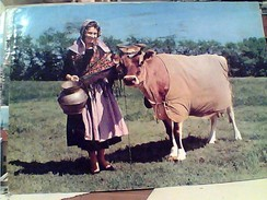 ENGLAND-JERSEY : MILKMAID AND COW ; VACHE MUCCA E CONTADINA  V1974 FW9506 - Jersey