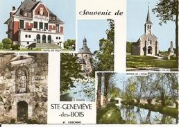 91. CPM. Essonne. Sainte-Geneviève Des Bois. L'Hôtel De Ville, L'église, Le Donjon, La Grotte, Bords De L'Orge (5 Vues) - Sainte Genevieve Des Bois