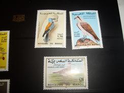 STAMP  NEUF**  MAROC OISEAUX - Marocco (1956-...)