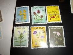STAMP  NEUF**  MAROC NATURE - Marocco (1956-...)
