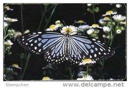 Taiwan Telephone IC Card IC06C009 Butterfly Nature - Taiwan (Formosa)