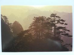 Zhangjiajie Wooded Mountain, CHINA Postcard - Cina