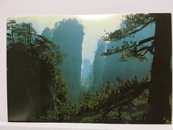 Zhangjiajie, Perilous Peak, CHINA Postcard - Cina