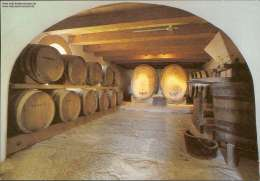 Weinfässer In Tulbagh / Südafrika (de Oude Drostdy, Tulbagh 1804) - Südafrika
