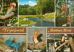 Vogelpark Metelener Heide Mehrbildkarte - Germany