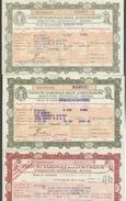 Istituto Nazionale Delle Assicurazioni Lotto Di 3 Quietanze 1940-1941-1943  Doc.241 - Azioni & Titoli