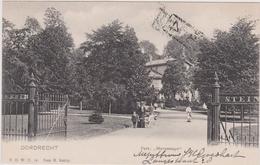 Dordrecht - Park Merwesteyn - 1905 - Dordrecht
