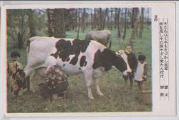 Japon - Traite De Vache - A Situer - Non Classés