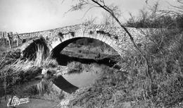 77 SOLERS Cpsm Le Pont Bossu 2 Scans Recto Verso - Autres Communes