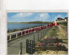 50 - SAINT PAIR SUR MER - LA PLAGE  1967 - Saint Pair Sur Mer