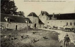 77 NESLES (près De Rozay-en-Brie) - Ferme De Richebourg - Très Animée, Berger, Chiens Et Important Troupeau De Moutons - Francia
