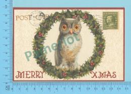 CPM - HIBOU - CHOUETTE - OWL - FROGMOUTH - NIGHTERJAR - Faux Timbre - 2 Scans - Oiseaux