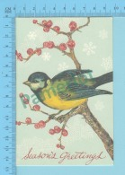 CPM - Bird, Oiseau,Vogel, Uccello, Pájaro - 2 Scans - Oiseaux