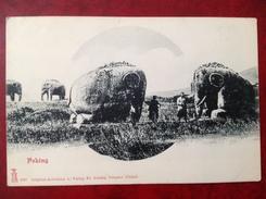 PEKIN PEKING Elephants De Pierre - China