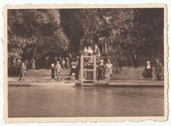Virelles - Lac De Virelles - Le Point De Vue 1947 - Chimay