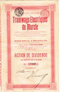 Ancienne Action 1905 - Transporte