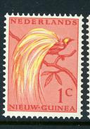 1954 - NUOVA GUINEA OLANDESE -  Catg. Mi. 25 - NH - (CAT85635.9) - Nuova Guinea Olandese