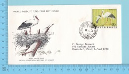 The White Stork, Cigogne Oiseaux - 1977- WWF, FDC, PPJ  - Hungary ( # 2459 ) - Panda Logo On  Envelope - Cicogne & Ciconiformi