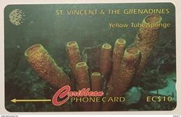 Yellow Tube Sponge 142CSVB (Big Font)