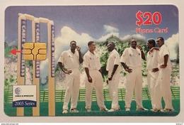 2003 Cricket Series