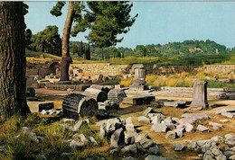 OLYMPIA   EASTERN  VIEW OF THE  TEMPLE OF  ZEUS              (NUOVA) - Grecia