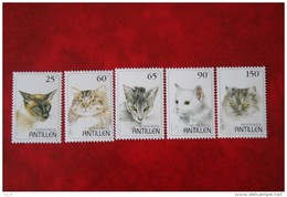 Katten Katze Cat NVPH 1102-1106 1995 MNH POSTFRIS NEDERLANDSE ANTILLEN  NETHERLANDS ANTILLES - Niederländische Antillen, Curaçao, Aruba