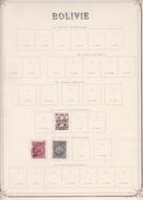 Bolivie - Collection Vendue Page Par Page - Timbres Oblitérés / Neufs * (avec Charnière) -Qualité B/TB - Bolivie