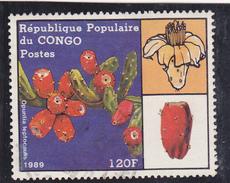 CONGO  Brazzaville  1989  Y. T. N°    Oblitéré - Congo - Brazzaville