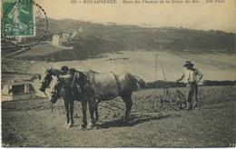 29 - Douarnenez - Dans Les Champs De La Grève Du Ris . - Douarnenez