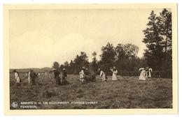 2 - Forges-Chimay - Abbaye N-D De Scourmont, Fenaison - Chimay