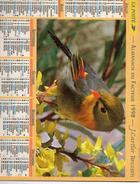 AKMANACH DES PTT 1998    CHAT OISEAUX   EDITER CARTIER BRESSON - Calendriers