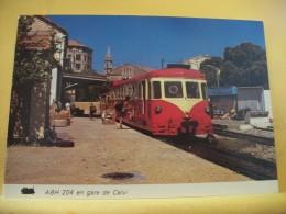 TRAIN 2223 - CPM - 20 CALVI - AUTORAIL RENAULT ABH N° 204 EN GARE - AOUT 1977 - Gares - Avec Trains