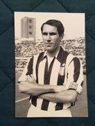 Fotografia Originale Di GIANCARLO BERCELLINO (I) Della Juventus - Fútbol