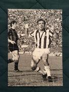 Fotografia Originale Di LUIS DEL SOL Della Juventus - Football