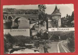 ROANNE - Environs - Dépt 42 - Multivues - Roanne