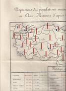 STATISTIQUE  OFFICIELLE 1914 DE LA POPULATION MUSULMANE GREQUE ARMENIENNE EN ASIE MINEURE 80X88CM - Other