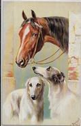 CPA Lévrier Barzoi Greyhound Chien Dog Non Circulé Femme Girl Woman REICHERT - Honden