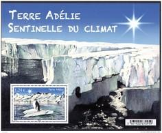 T.A.A.F. - Manchot De Terre Adélie - Ungebraucht