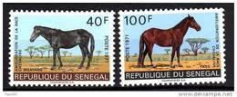 Sénégal N° 343 / 44 XX  Amélioration De La Race Chevaline  La Paire Sans Charnière, TB - Senegal (1960-...)