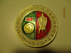 RUSSIA USSR FOOTBALL SOCCER 1973 ARMENIA YEREVAN ARARAT CHAMPION  PIN BADGE , O - Fussball
