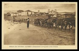 PRAIA DA VITORIA - Camponeses Carregando Areia Branca ( Ed. Azera ) Carte Postale - Açores