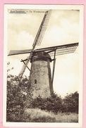 Oud - Turnhout - De Windmolen - Oud-Turnhout