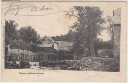 28203g  RUISSEAU - PASSERELLE -  HABITATION - Palogne - 1906 - Ferrieres