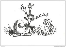 SNAIL * ANIMAL * FLOWER * PLANT * Csig Art A0011 * Hungary - Otros