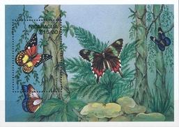 Nicaragua  Butterflies