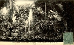 GUINEE - Jardin Public De Conakry - N° 21490 - Guinea Equatoriale