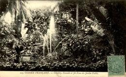 GUINEE - Jardin Public De Conakry - N° 21490 - Guinée Equatoriale