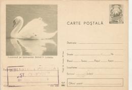 BIRDS, SWAN, PC STATIONERY, ENTIER POSTAL, 1970, ROMANIA